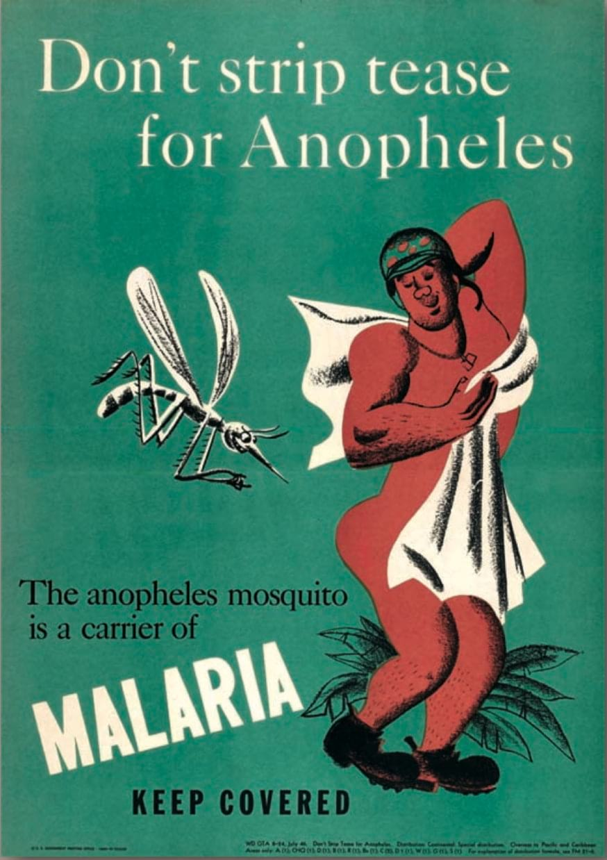WWII Malaria educational poster @USNatArchives.jpg